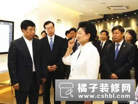 国务院副总理刘延东参观海信智慧家居展厅,体验智能家居生活