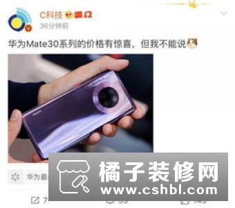 华为Mate30 Pro国行8GB 256GB价格:4999元