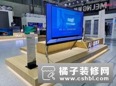 开启家电行业CP时代 长虹美菱联袂苏宁剑指百亿